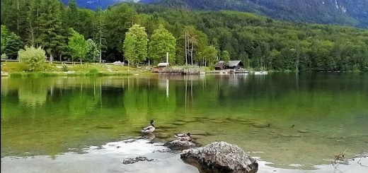Lake Bohinj, Triglav National Park, Gorenjska, Slovenia, Europe