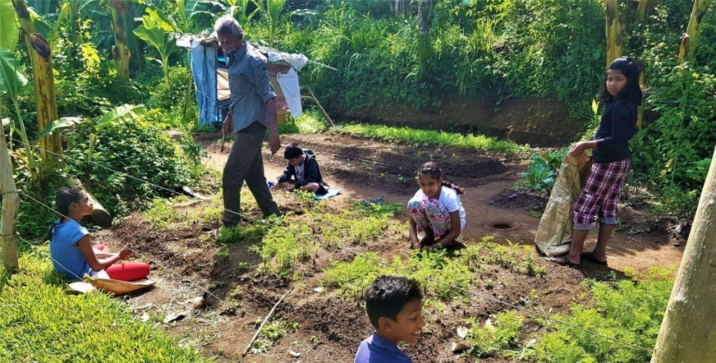 Organic Farms, India