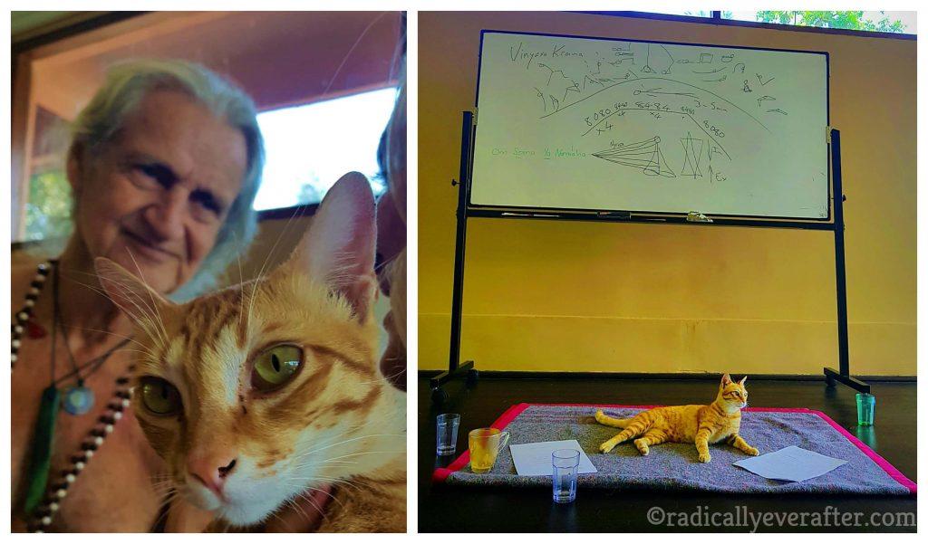 Mark Whitwell & Cat